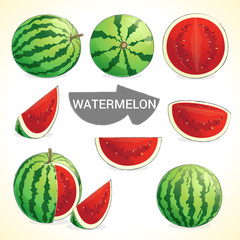 Set of watermelon in various styles vector format