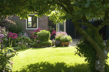 Fototapeta An idyllic garden in Giethoorn