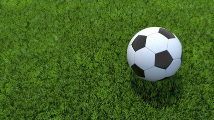 ballon football pelouse 02