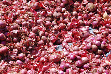 Exhibition and sale of red onions at the market of the Village o