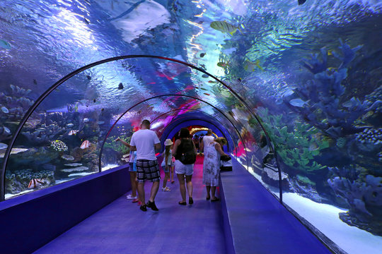 People enjoy the underwater view of the aquarium Antalya. The aquarium is the longest in the world panoramic tunnel with a length of 131 meters