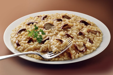Dish of Mushroom Risotto with Fork