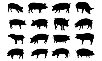 Pig Silhouette, set vector Animals Icons