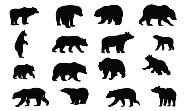 Bear Silhouette, set vector Animals Icons