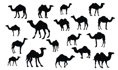 Camel Silhouette, set vector Animals Icons