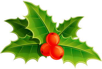 Holly leaves and berries. Vector illustration.
