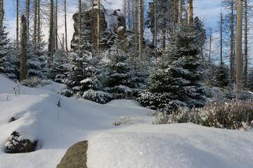 Der Hopfensack im Winter am Kaiserweg im Harz
