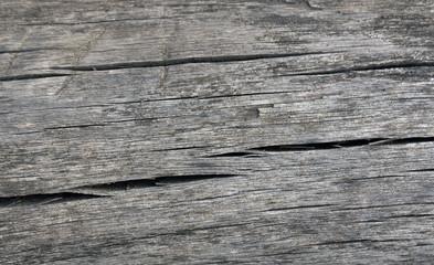 Timber texture.