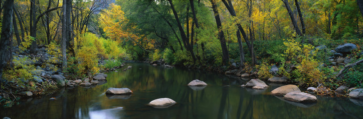 Wall Mural - This is Cottonwood Canyon in the autumn. There is a stream flowing through the canyon.