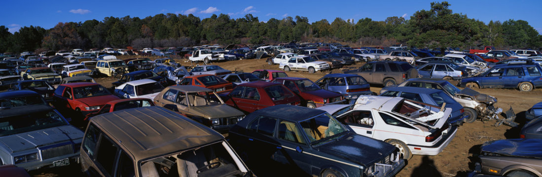 This is an auto salvage yard. The cars here are either crashed vehicles or no longer in use. They are wrecks all parked side by side.