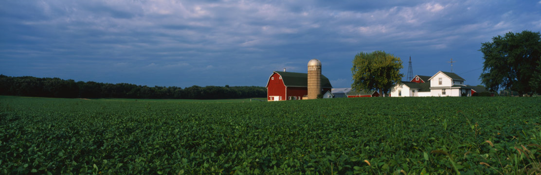 This is a farm with a silo and barn. Directly behind it sits a white farmhouse. It sits in the middle of a green farm field.