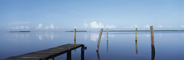 Wall Mural - This is the morning view of Pine Island Sound. Its pier juts out from the left side with wooden pylons standing up out of the water near the shore.