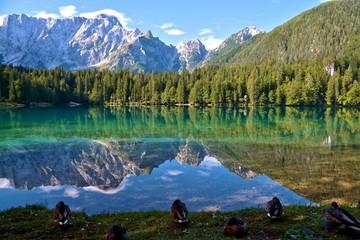 Laghi di Fusine - Weissenfelser Seen - Belopeška jezera  (in the background Mangart) Summer 2015