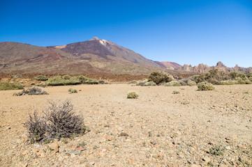 Arid and stony landscape of caldera with view on volcano Teide, Tenerife