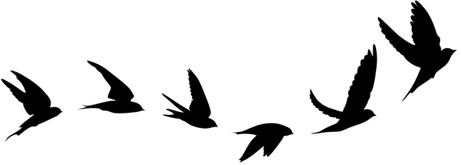 flying birds tattoo clipart