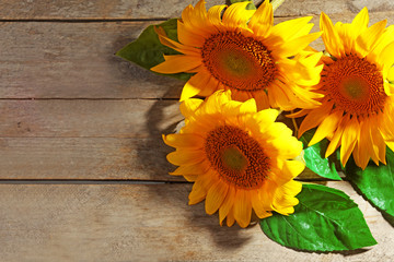 Beautiful bright sunflowers on wooden table close up