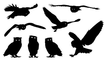 Aluminium Prints Owls cartoon owl silhouettes