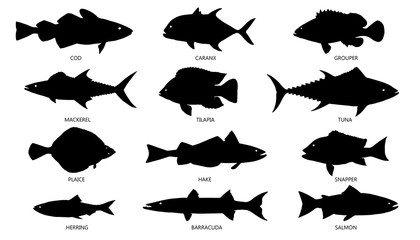 seafood silhouettes