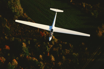 Glider viewed from above