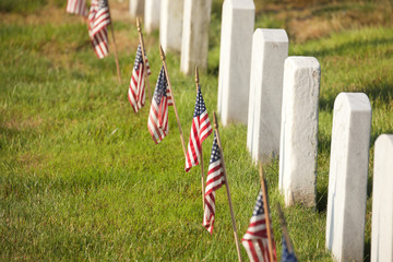 American flags near gravestones at Arlington National Cemetery i