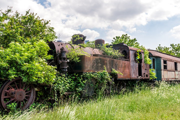 An old abandoned and rusty steam locomotive overgrown with branches and green bushes standing on an unused railway with dry grass and blue sky