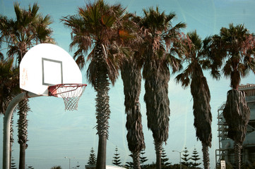 aged and worn vintage photo of basketball hoop at beach with palm trees