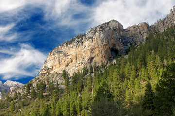 Wall Mural - Spring Mountains National Recreation Area in Nevada