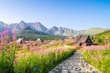 Obraz Wooden huts scattered on flowery meadow - fototapety do salonu