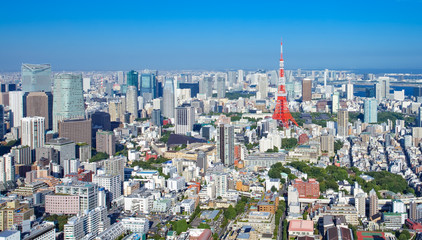 Tokyo city view and Tokyo landmark Tokyo Tower.