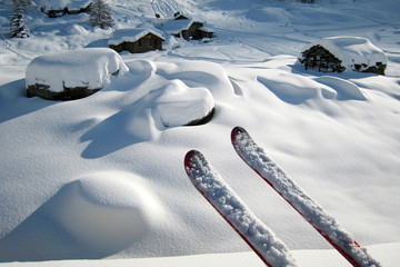 Skis in a Winter Landscape