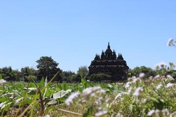 Plaosan Temple building 2