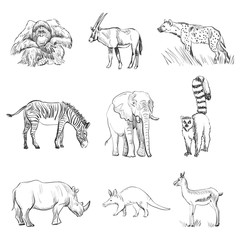 Character design Set of animals silhouettes