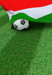Soccer ball and national flag of Hungary,  green grass