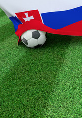 Soccer ball and national flag of Slovakia,  green grass