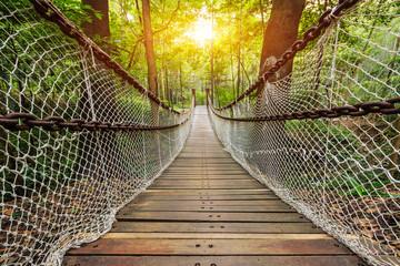 In de dag Brug Suspension bridge in the forest