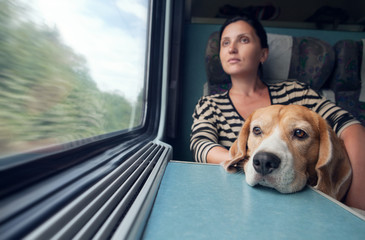 Woman with dog in the train wagon