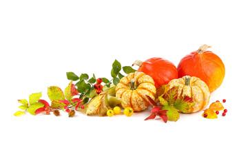 Herbst - Freisteller - Dekoration mit Kürbis, Beeren und buntem Herbstlaub
