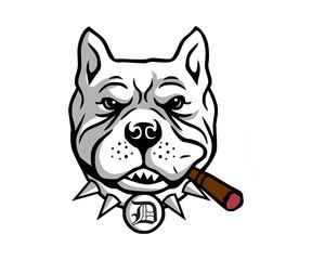 smokers dog pitbull