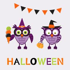 An illustration of cute halloween owls