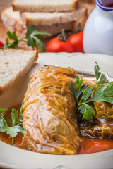 Dish of cabbage stuffed with meat.