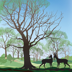 Forest background Landscape wtith deer and spring trees