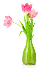 Pink tulips in bright vase, isolated on white