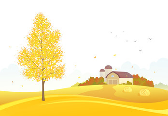 Autumn farm background