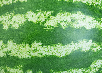 watermelon close-up as a background