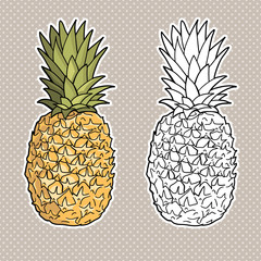 Isolated pineapples. Graphic stylized drawing. Vector illustration. Black and white