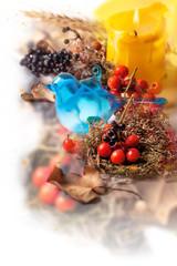 Autumn composition with blue bird
