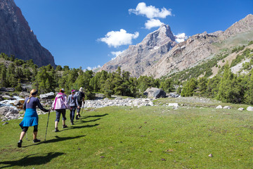 Group of Hikers Walking into Wilderness Large Group of People Sport Clothing Going on Green Grass Meadow Up towards Forest and Mountain Peaks Sunlight Blue Sky Majestic Summits Background