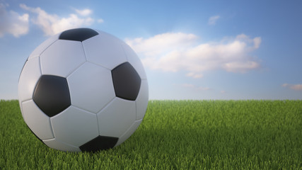 3 D render of soccer ball on a field.