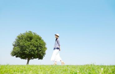 Wall Mural - 一本木のある原っぱを散歩する女性