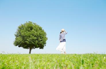 Wall Mural - 一本木のある原っぱに立つ女性
